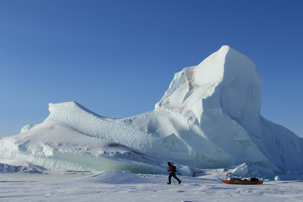 Iceberg frozen into the sea ice.