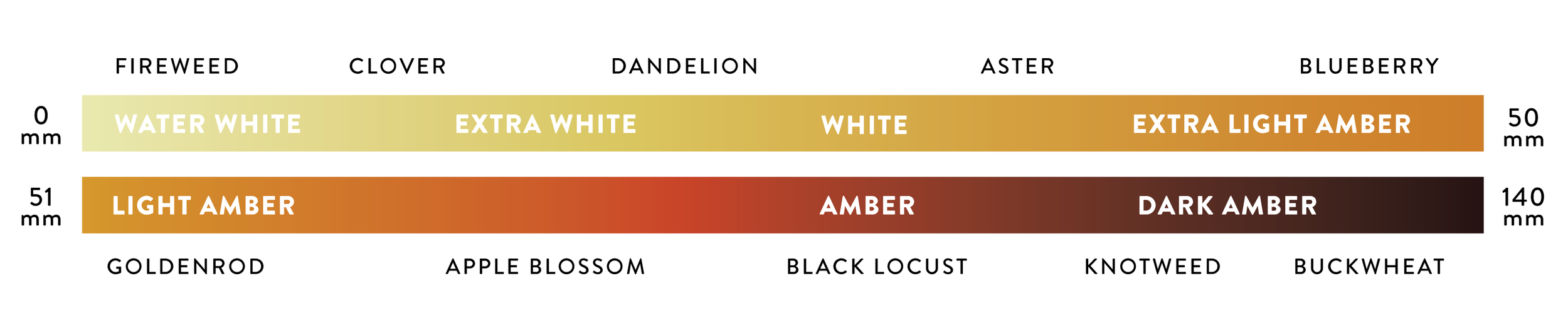 Honey Color Chart with common floral sources, there are seven color grades.