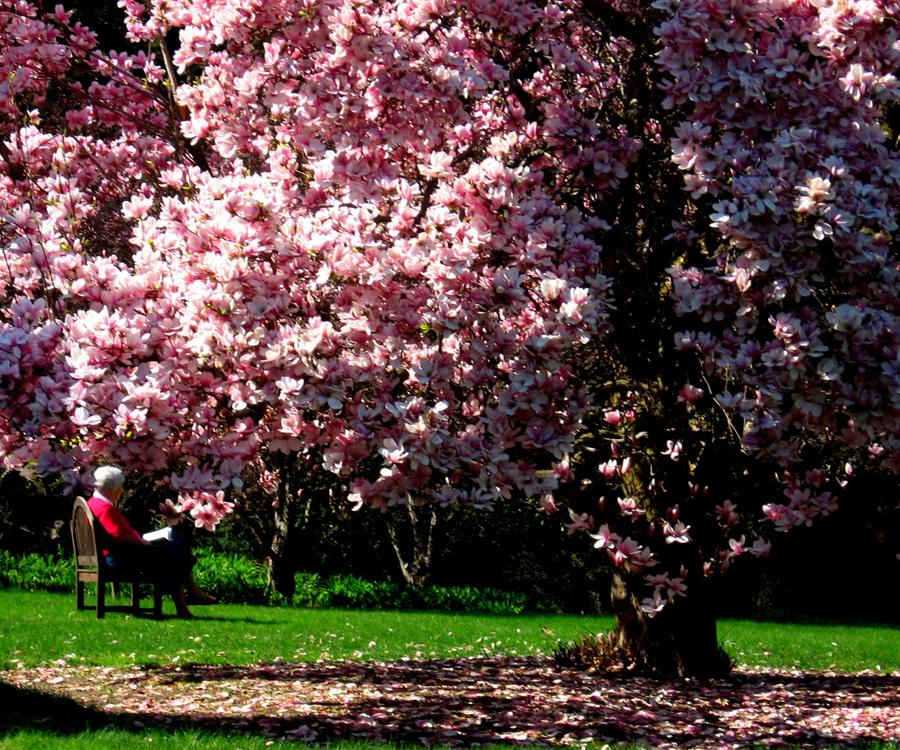 043008Wed Association Magnolia PH Hi 0003.jpeg