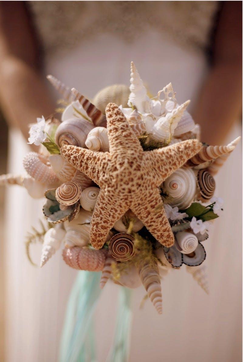 Seashell1.jpg