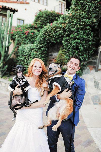 55372f3e38cac5fd0deaf6e890aedb56--pets-at-weddings-wedding-tuxedos.jpg