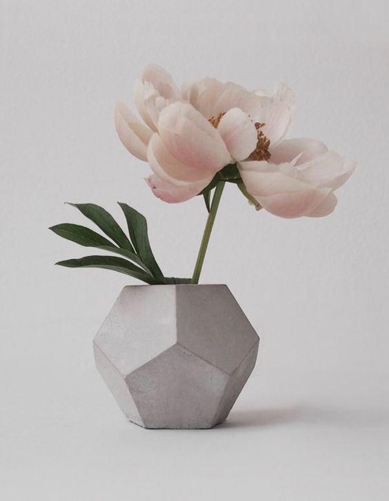 33-faceted-concrete-vase-with-a-single-large-bloom (1).jpg