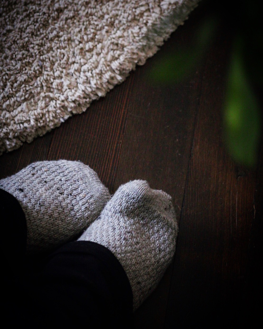 sixpence socks