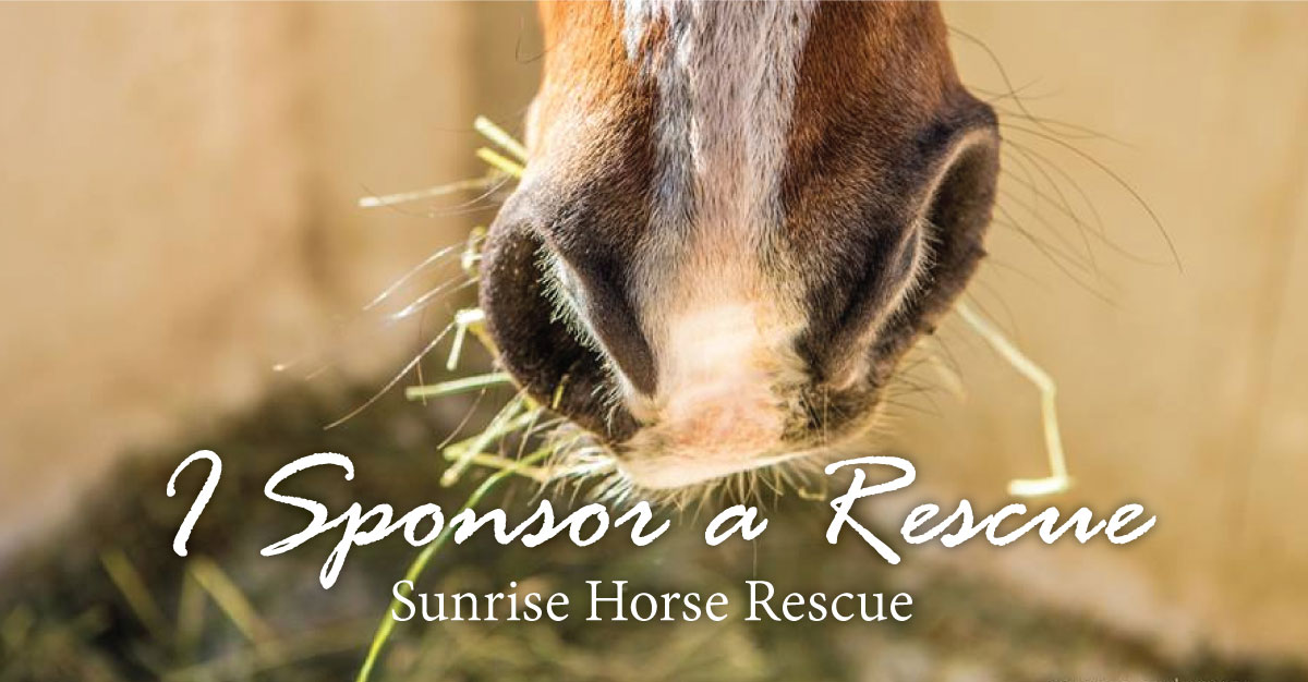I Sponsor a Rescue at Sunrise Horse Rescue
