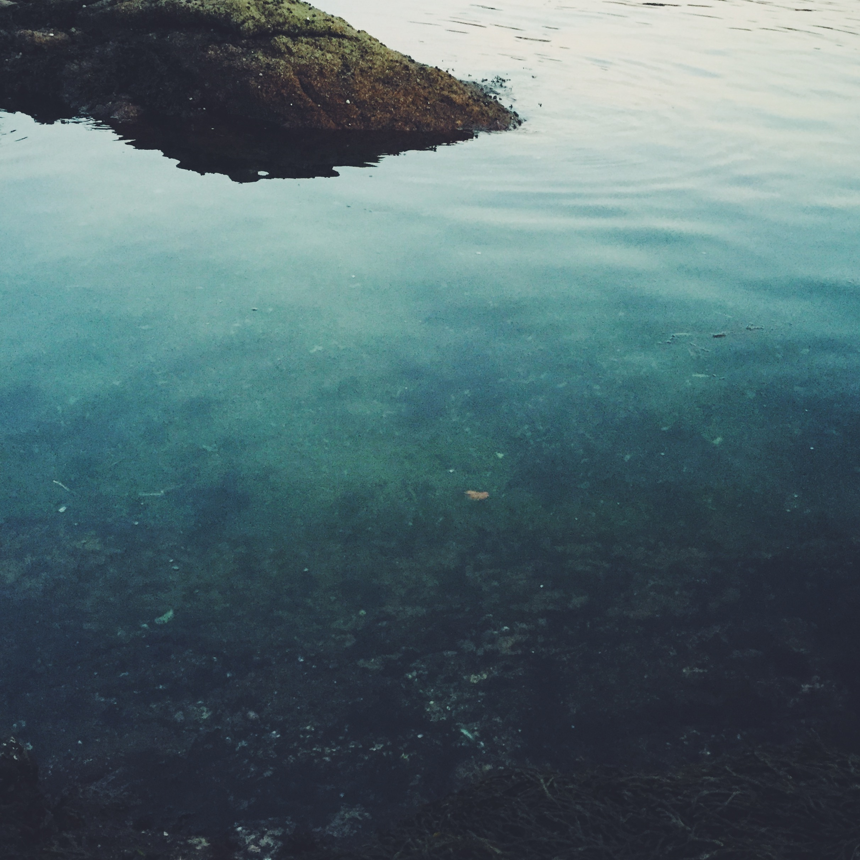 Green Water Harbor, Cliff Kuhn-Lloyd