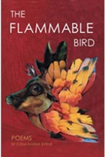 flammable cover.jpg