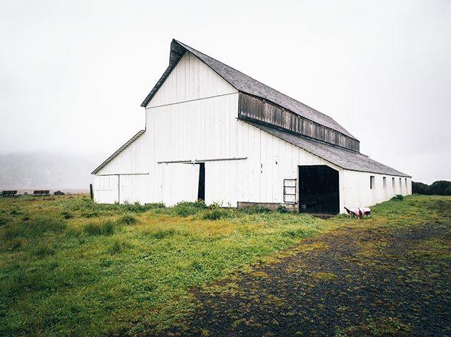 Lonely Barn ☁️🌨☁️ • • • • • #pointreyes #sf #california #bayareahikes #folkscenery #rosiegram