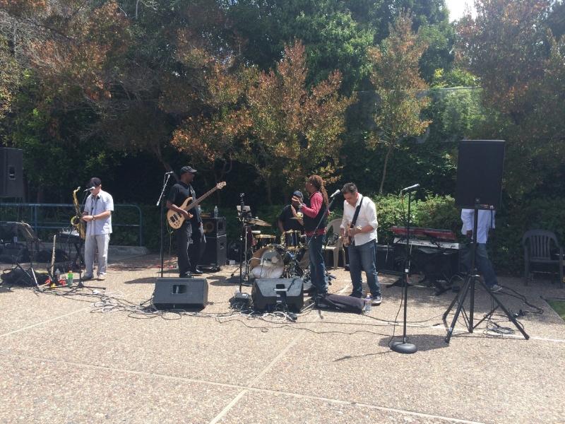 2015_Gladman 50th party band.JPG
