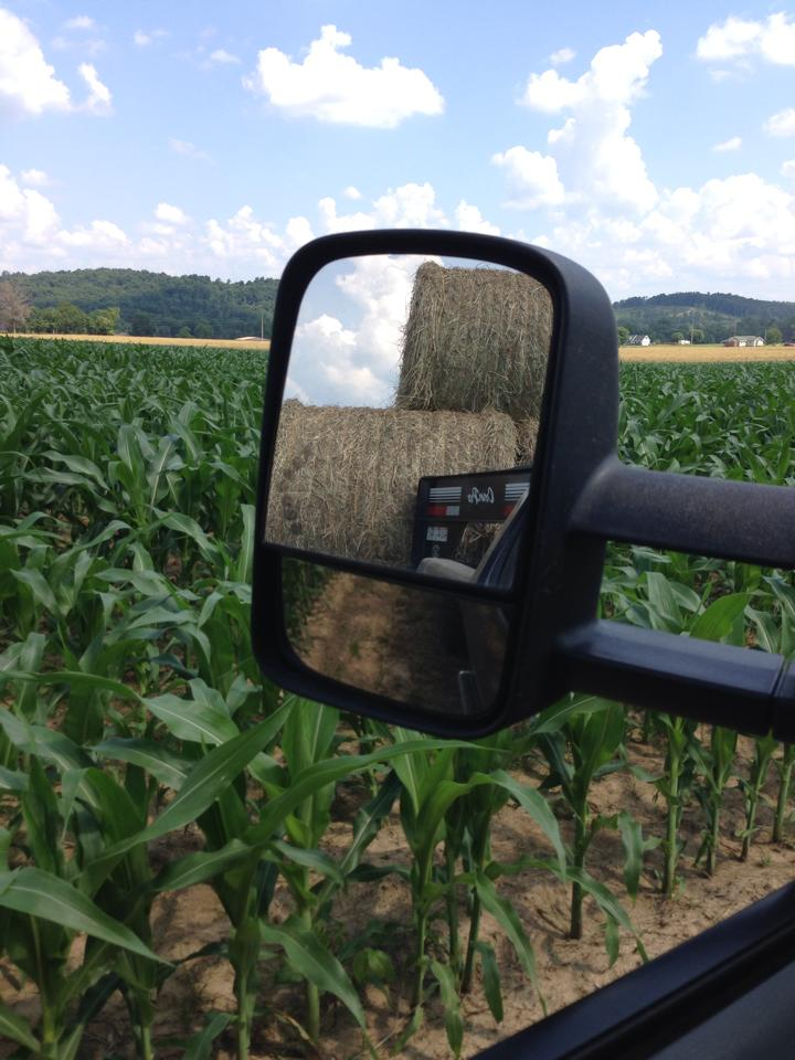 Adam Fout - Farming.jpg