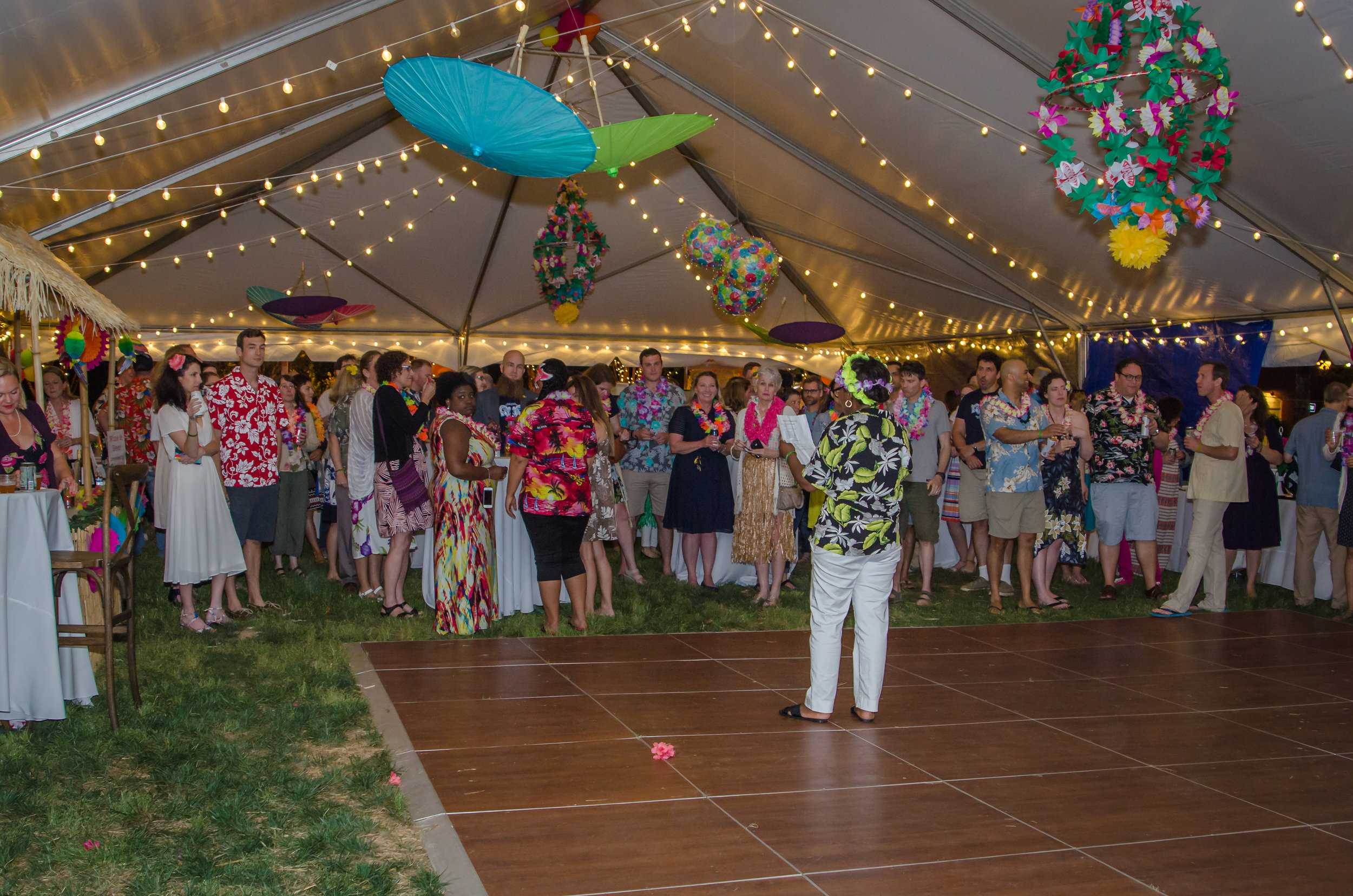 auction pic luau.jpg
