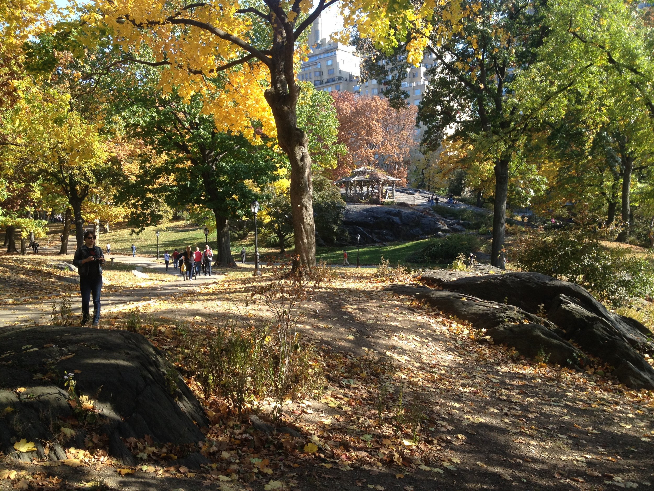 Running thru Central Park, New York City