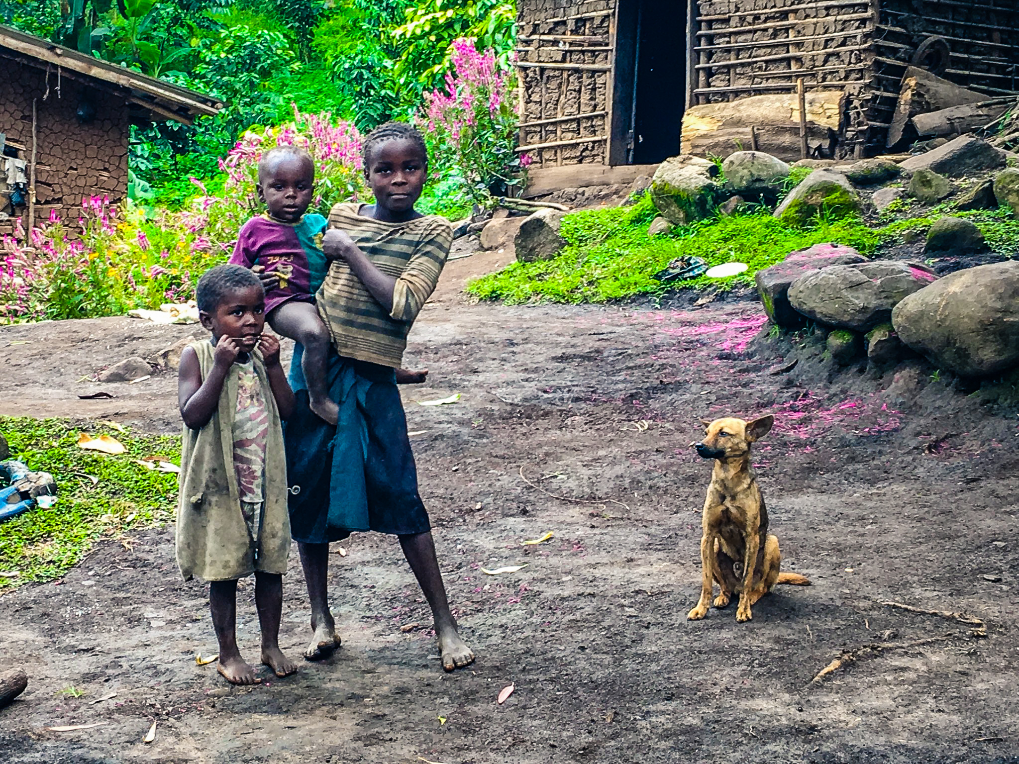 Farming Family, Rwenzori Mountain