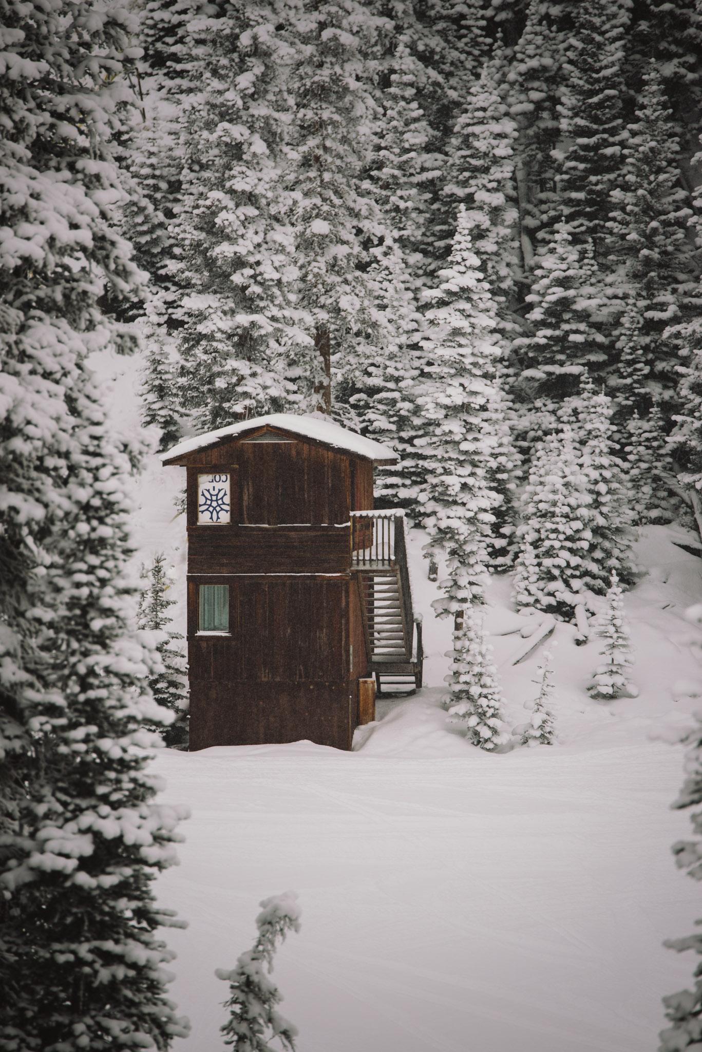 Chelsea Czibere - January 19, 2018 - Nakiska Ski Resort-35.jpg
