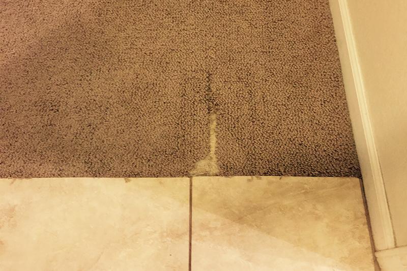 Berber Carpet damaged.