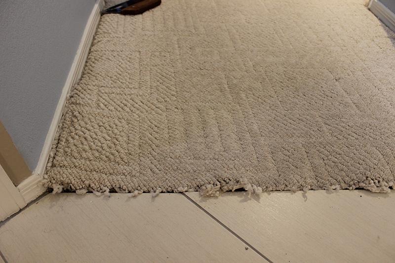 Carpet Frayed/Loose at tile.