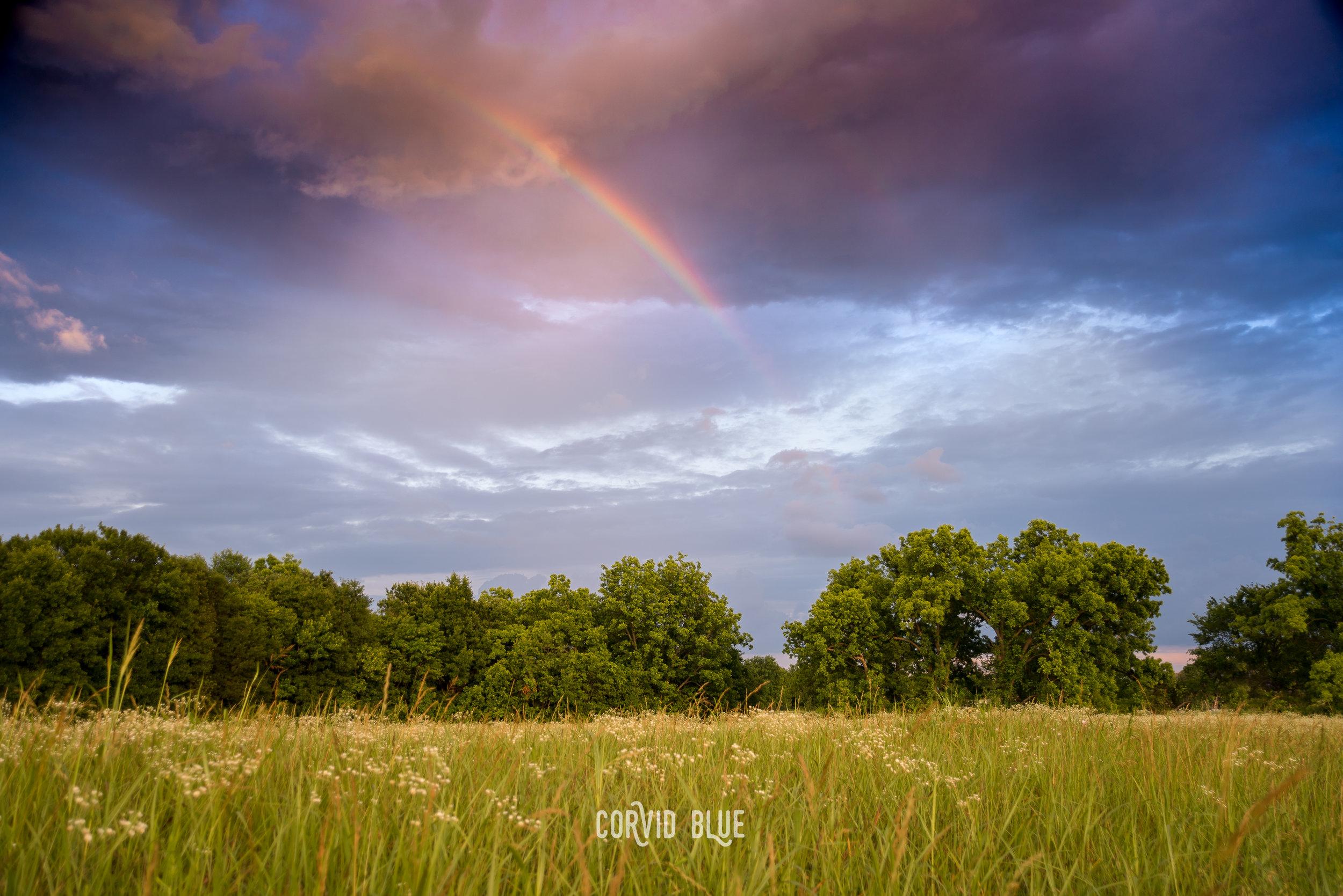 223_weather color.jpg