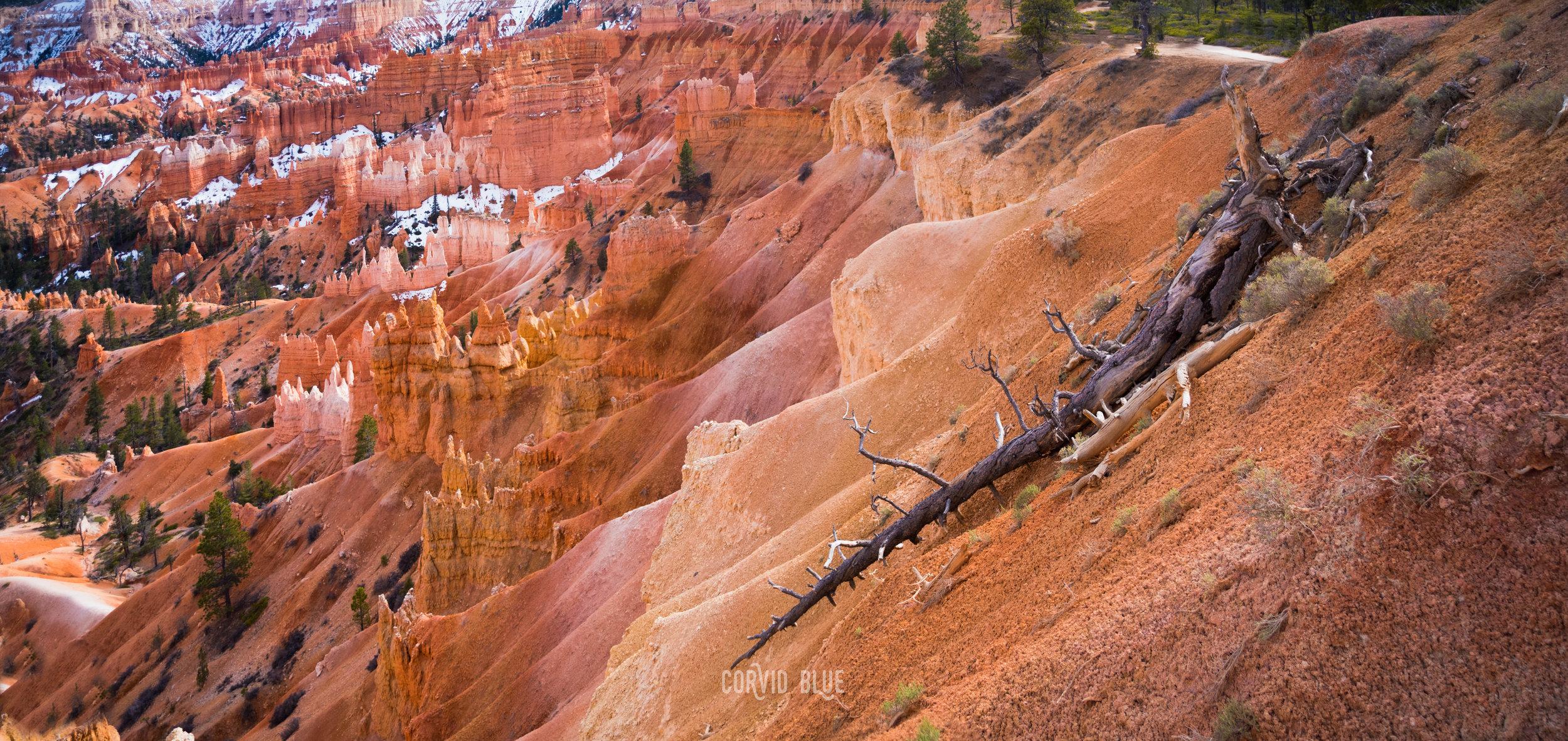 bryce-canyon-national-park_34136392632_o.jpg