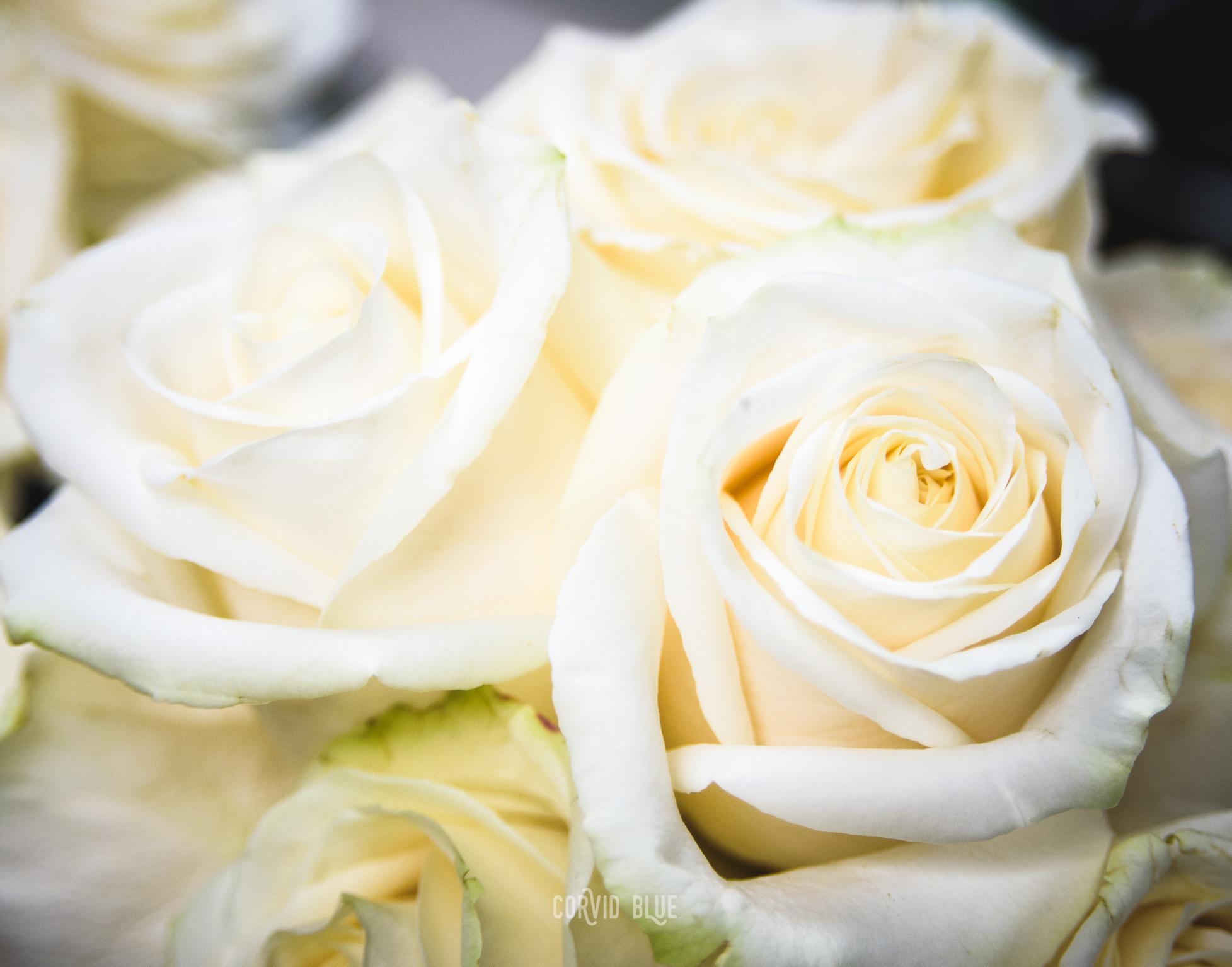 Kirk wedding-77.jpg