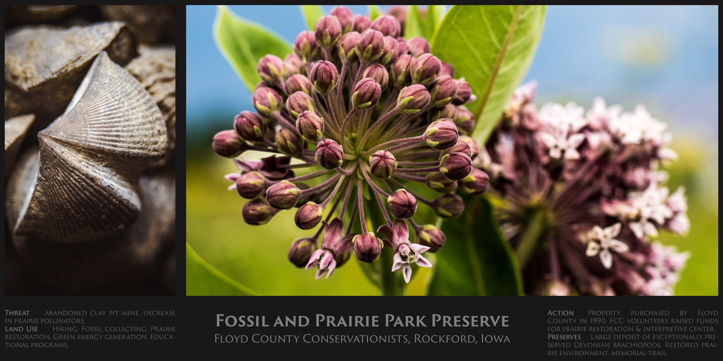 Fossil & Prairie Park.jpg