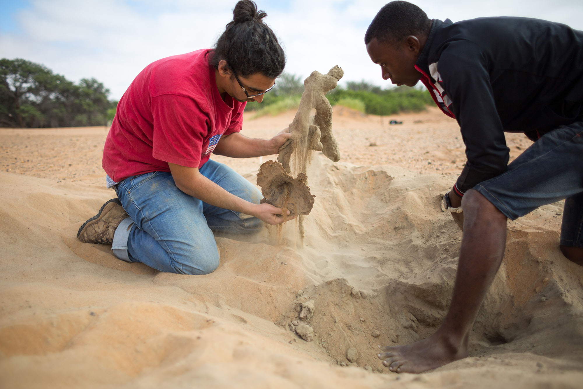 Above:  Researchers at Gobabeb extract an unoccupied scorpion burrow from the sand. The burrow structure had hardened due to the drying of resin.