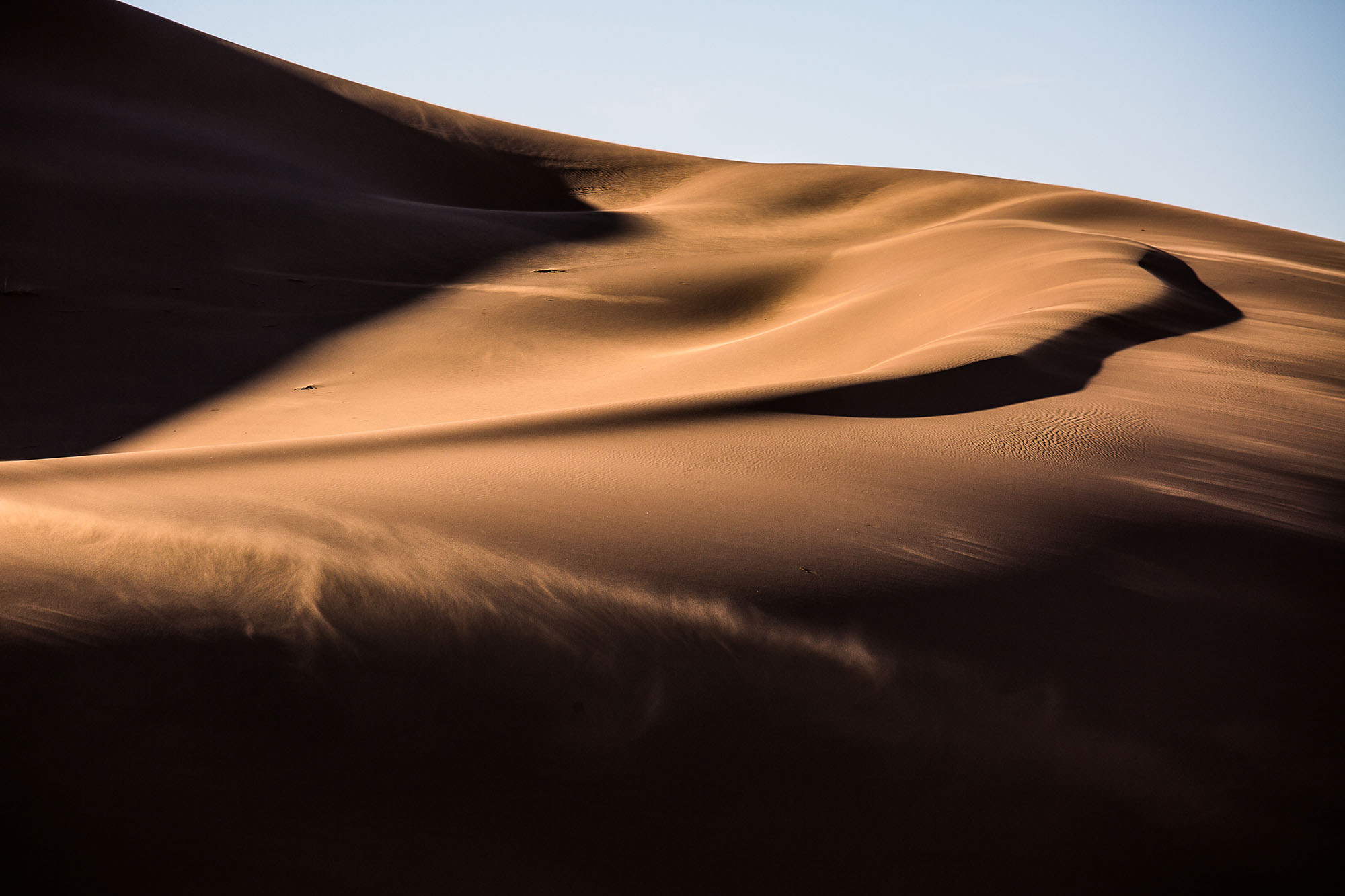 High Dune.jpg