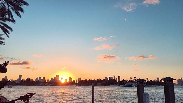 Another amazing sunset over Downtown Miami seen from Star Island. Ready to upgrade your lifestyle? To buy, sell or rent Miami text, call or DM 📲 us today. #StarIsland #BuyMiami #LuxuryListings #DemascusGroup #SRGmiami • • • For more information buying, renting or selling real-estate in Miami head to DemetriDemascusMiami.com Call/ Text: 203-252-7201