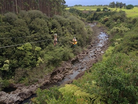 zipline-hawaii-525x393.jpg