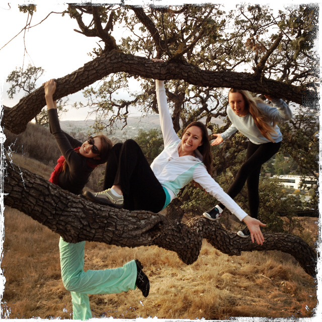 girls in tree 3.JPG