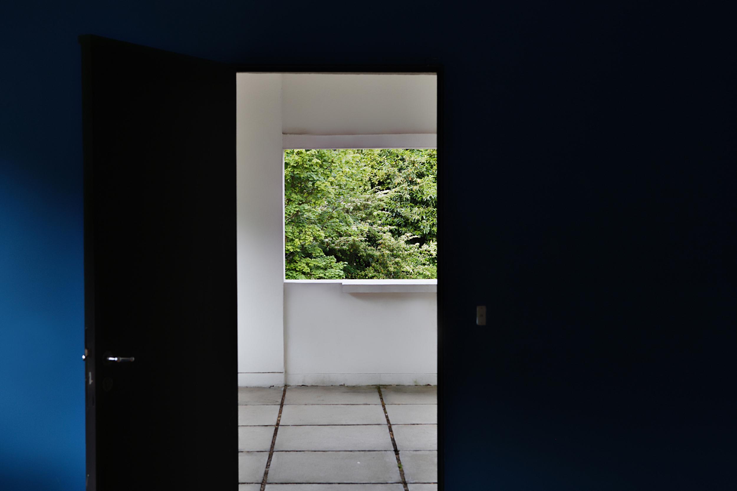 Nature: Framed, 2010