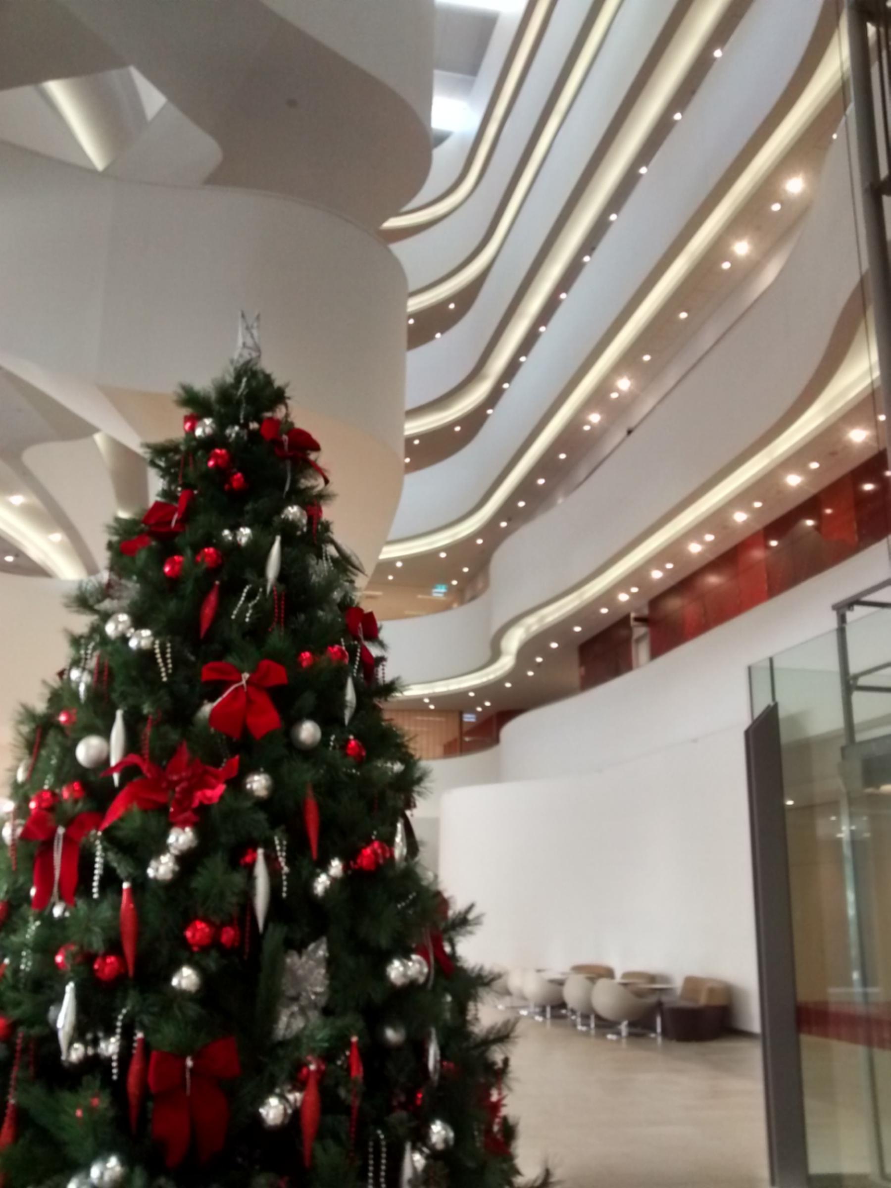 christmas charles perkins centre