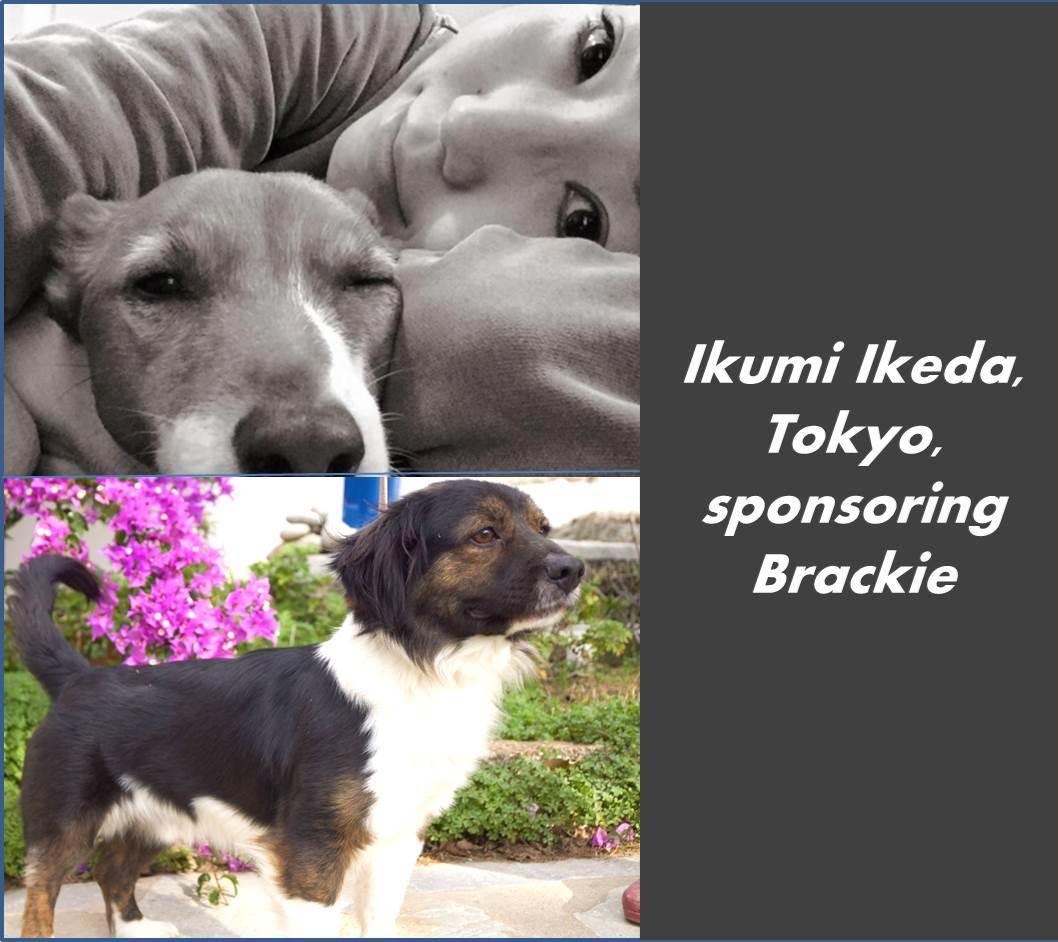 Ikumi Ikeda Brackie.jpg