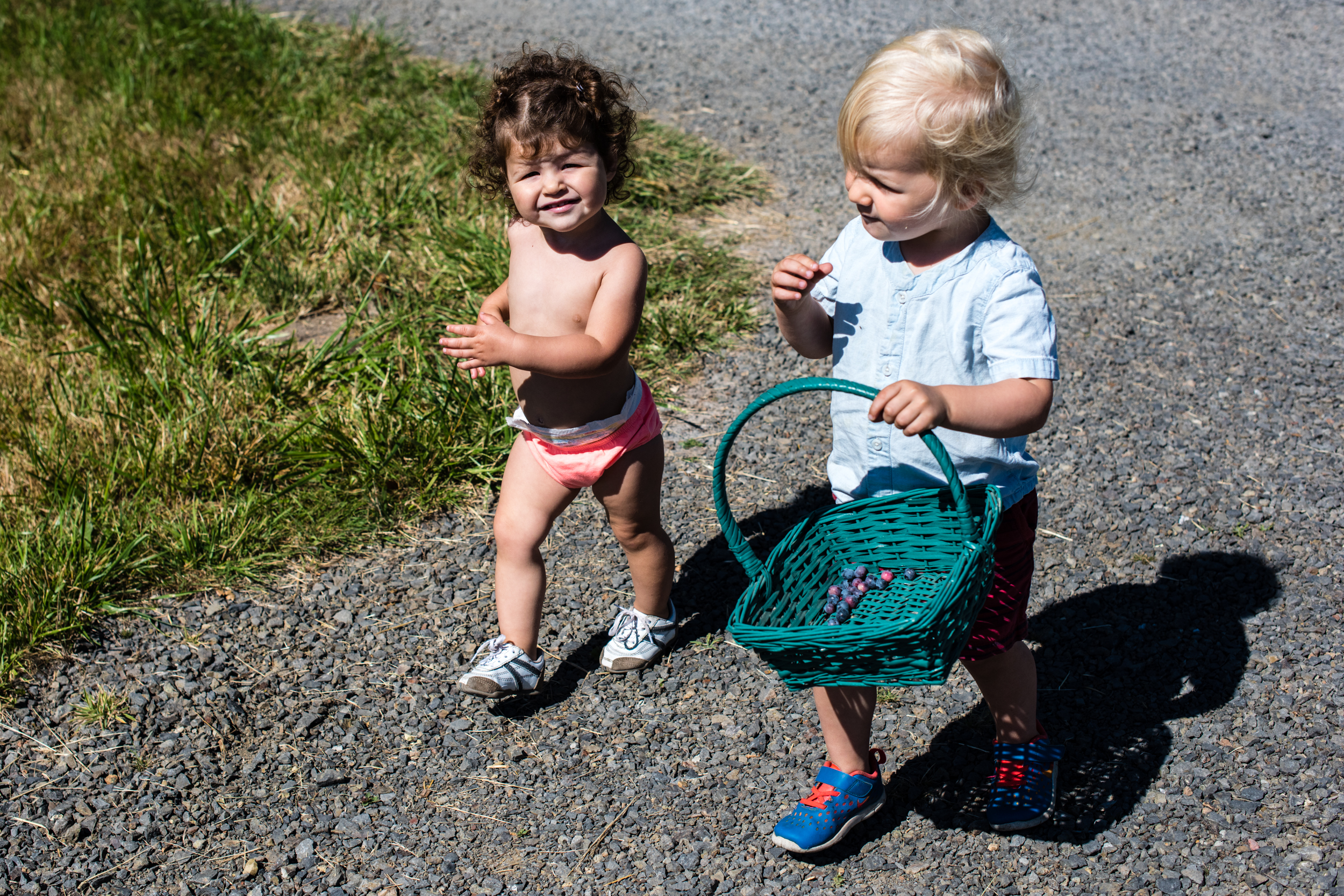 And now for some cute berry-picking kids from The Croft Farm