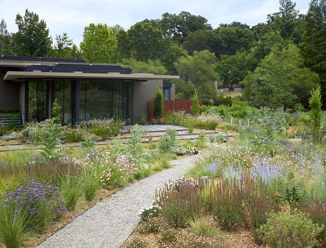 siteworks-landscape-construction-woodside-corten-steel-meadow-4.jpg
