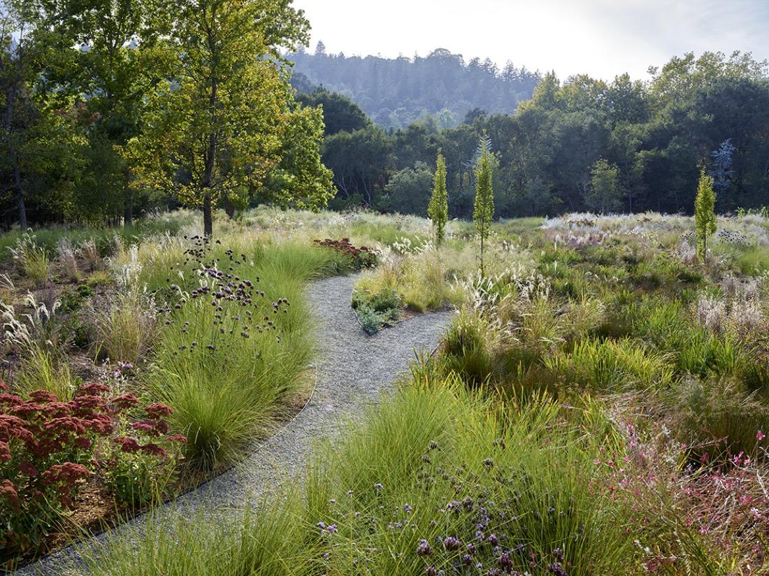 siteworks-landscape-construction-woodside-corten-steel-meadow-6.jpg