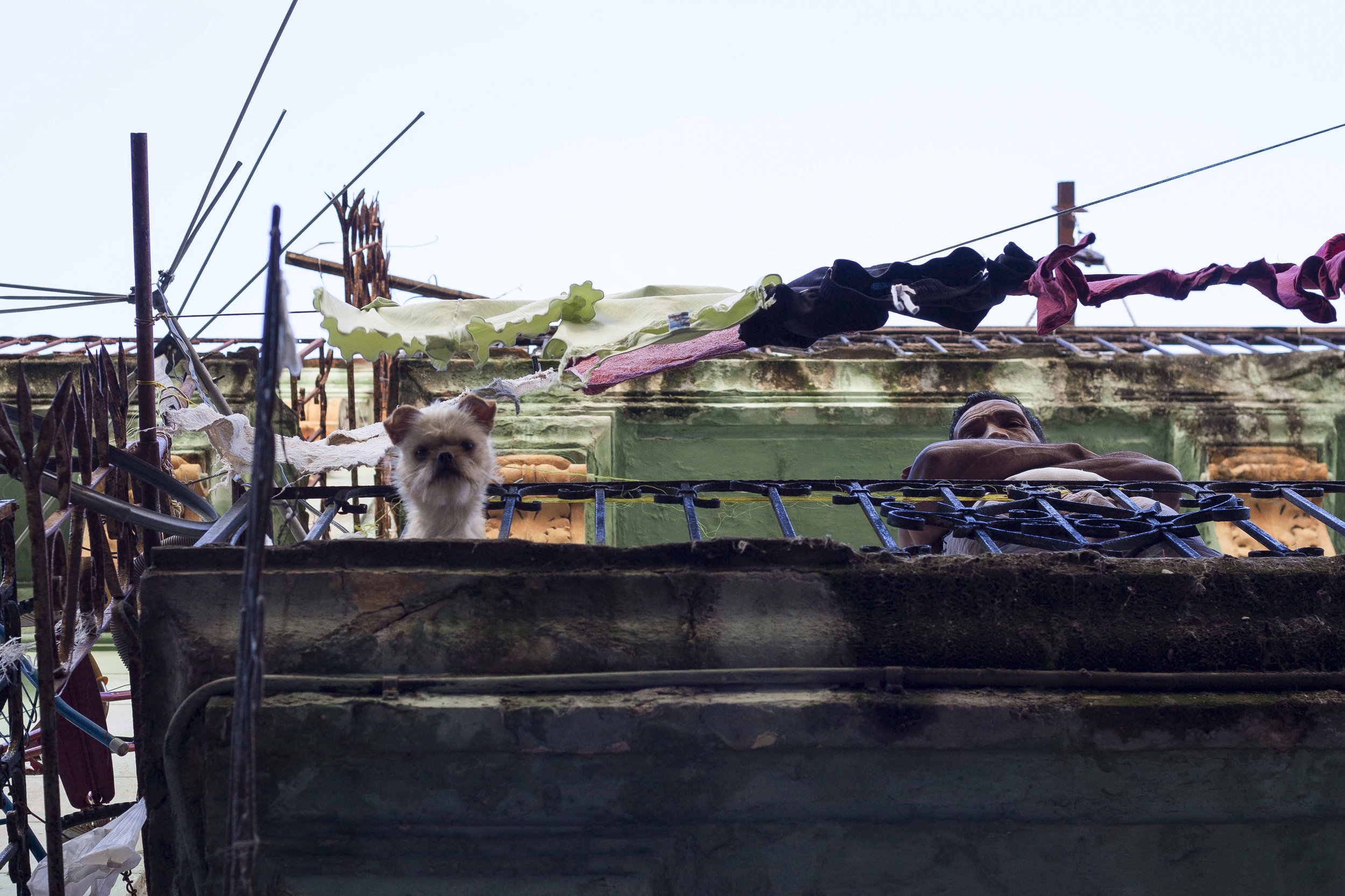 CS_20140105_CanonEOS450D_Habana (2)-2RRR.jpg