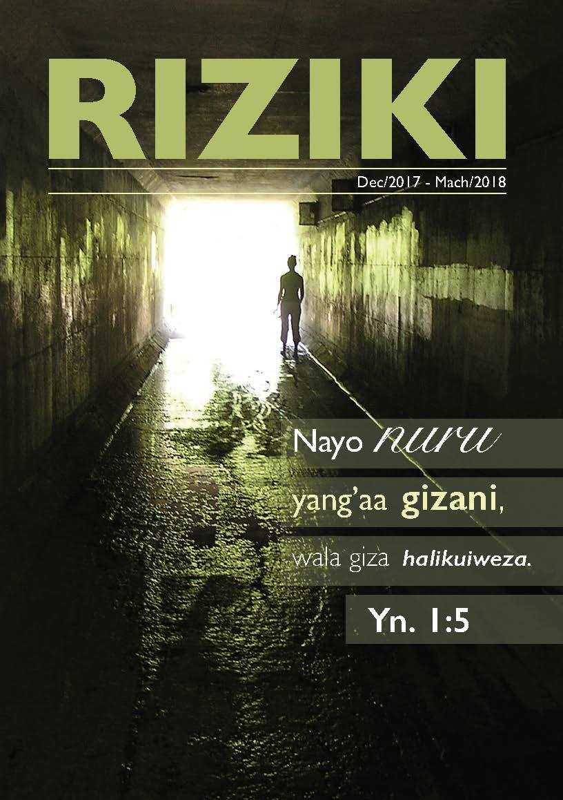 RIZIKI # 4, 2017 -
