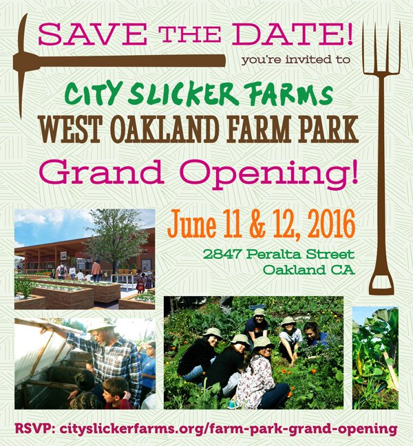 City Slicker Farms' Farm Park Grand Opening
