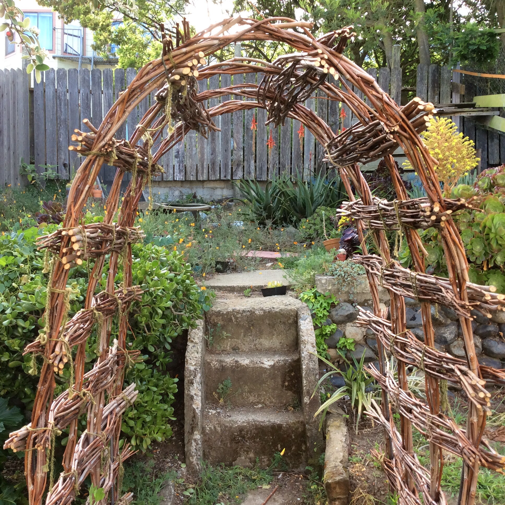 Arbor built in place and in front of steps to the elevated back section of the yard.