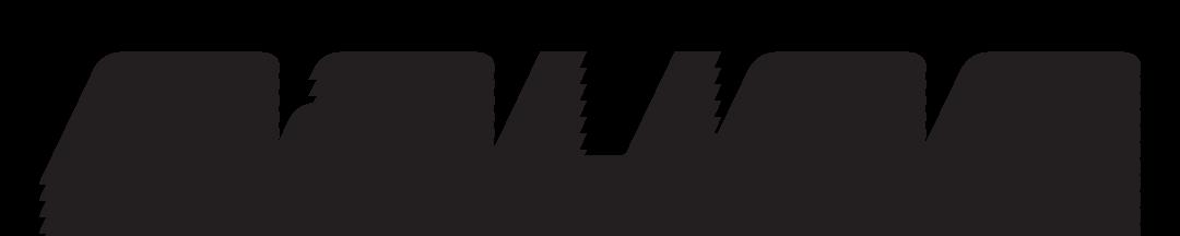 bauer-logo-vector.png