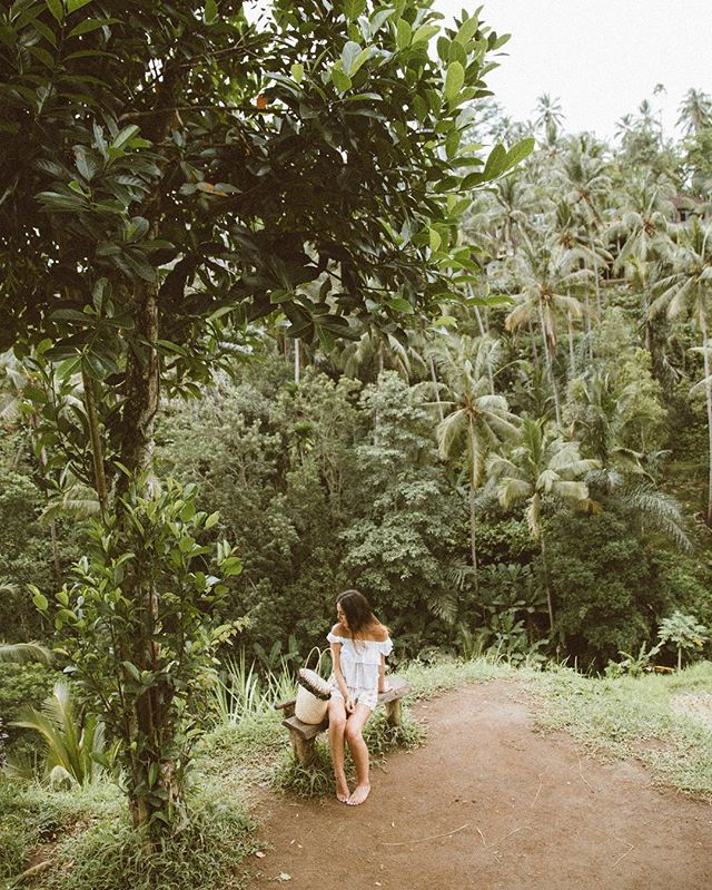 One happy little (always) barefoot monkey in the jungle 🐒🌴 ☼✧☼ 📷: @jessihoffy • • • • • #tegallalang #ubudbali #riceterraces #ardene #jungleland #junglegirl #baliguide #baligasm #balitravel #travelzoo #speechlessplaces #girlpowertravel #journeysofgirls #wanderlusters #baligasm