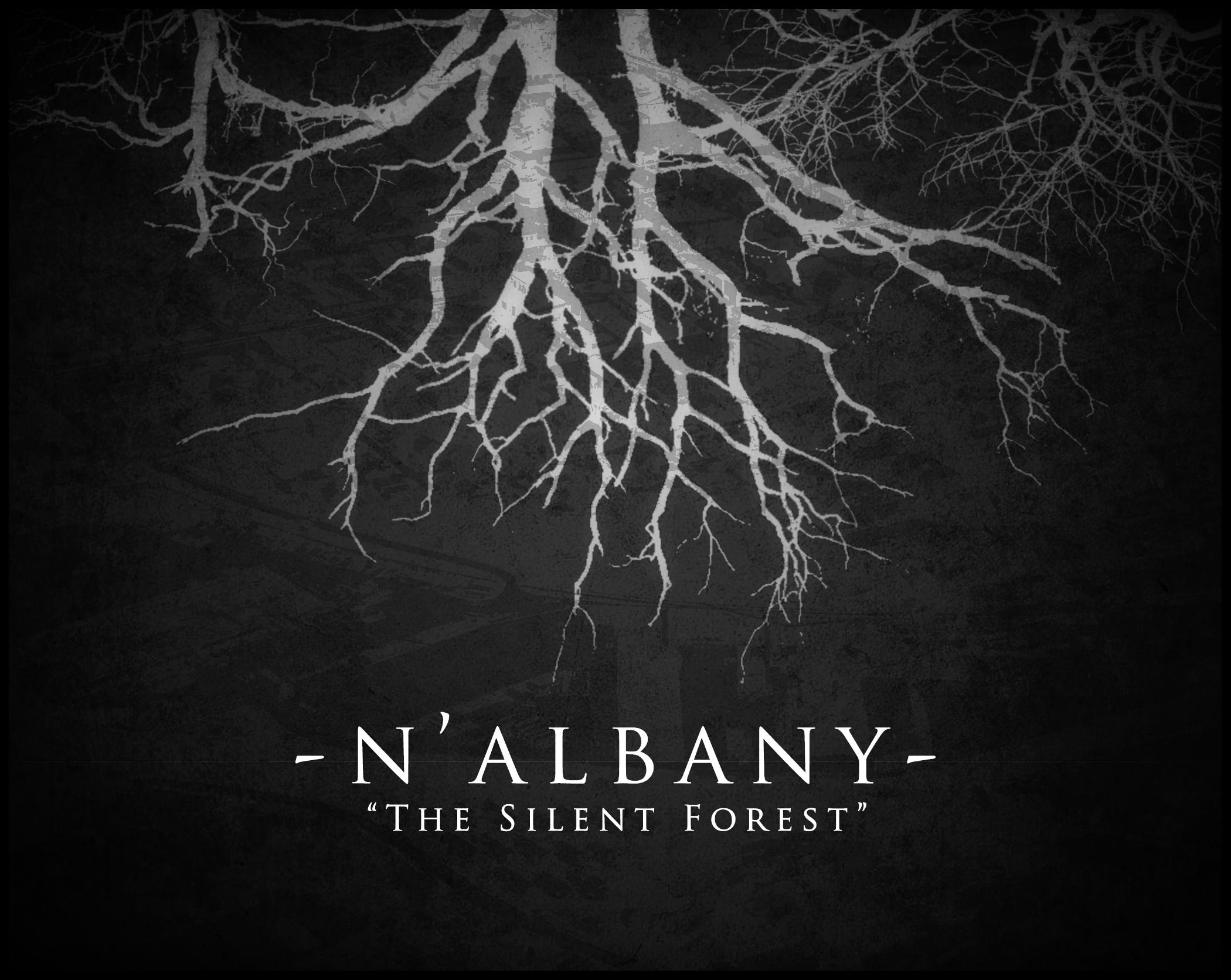 Albany COVER 2.jpg