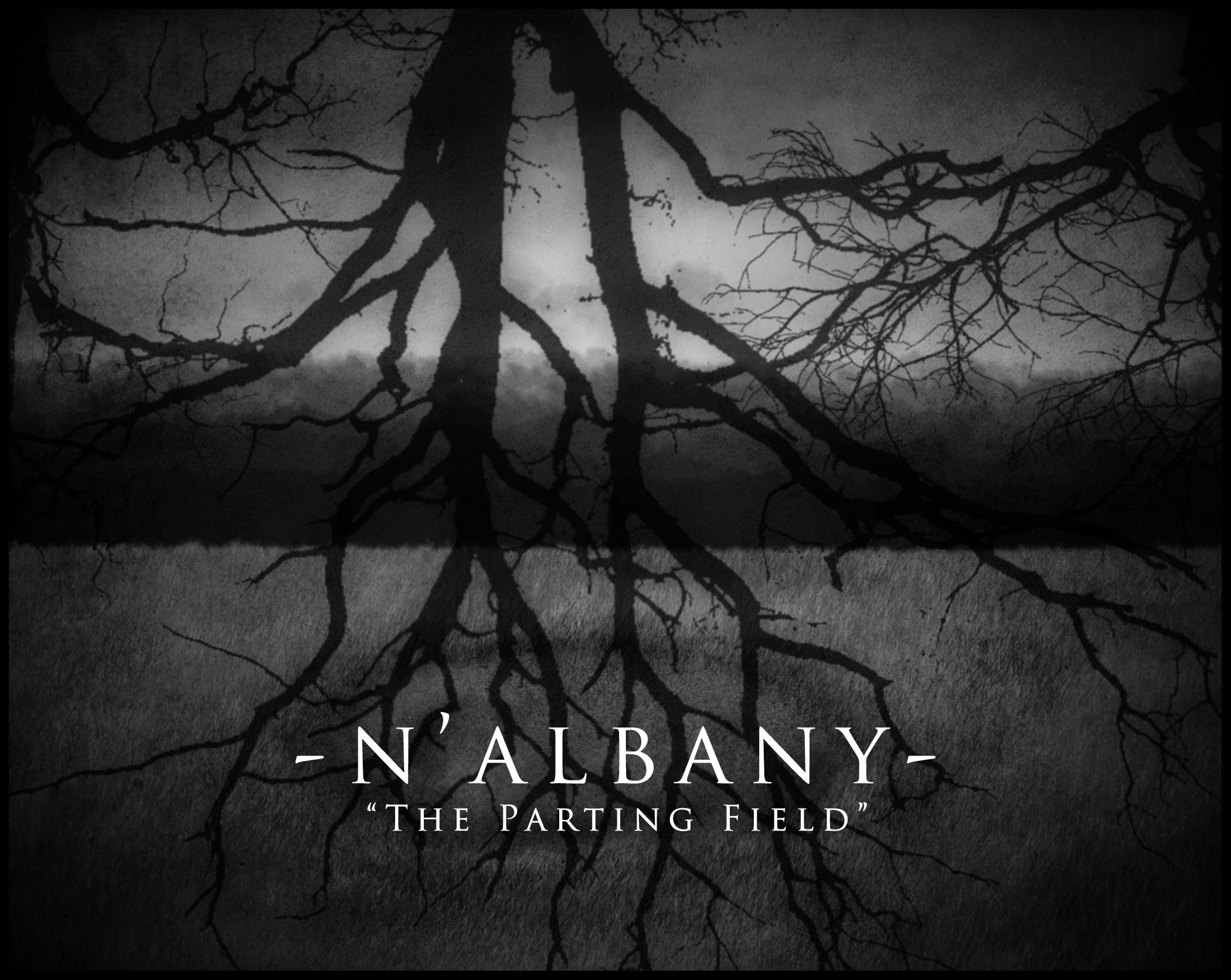 Albany COVER 3.jpg