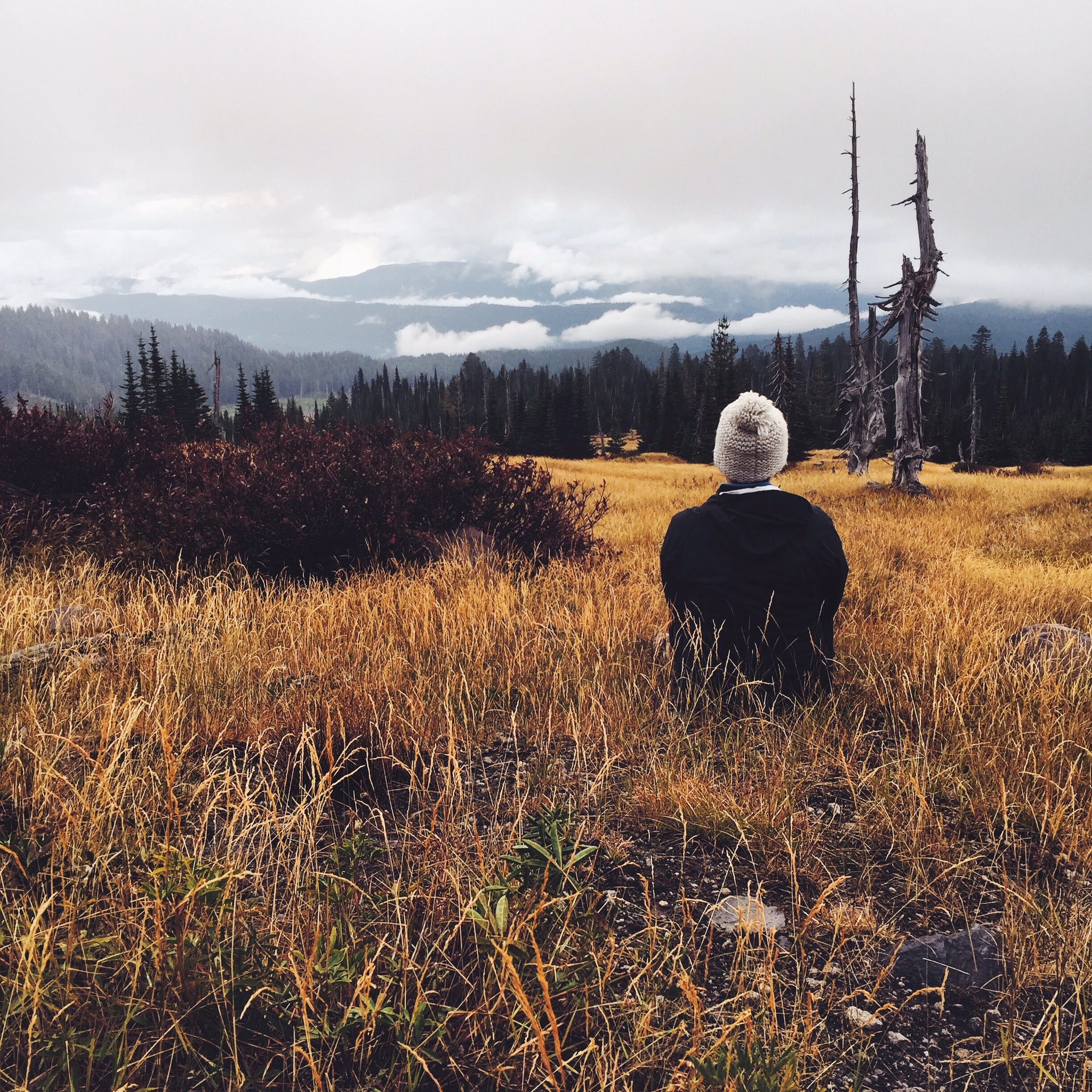 After hearing the warning bark of an elk, we wandered up to this meadow to find an astonishing view of the valley floor. A moment with nature was in order.
