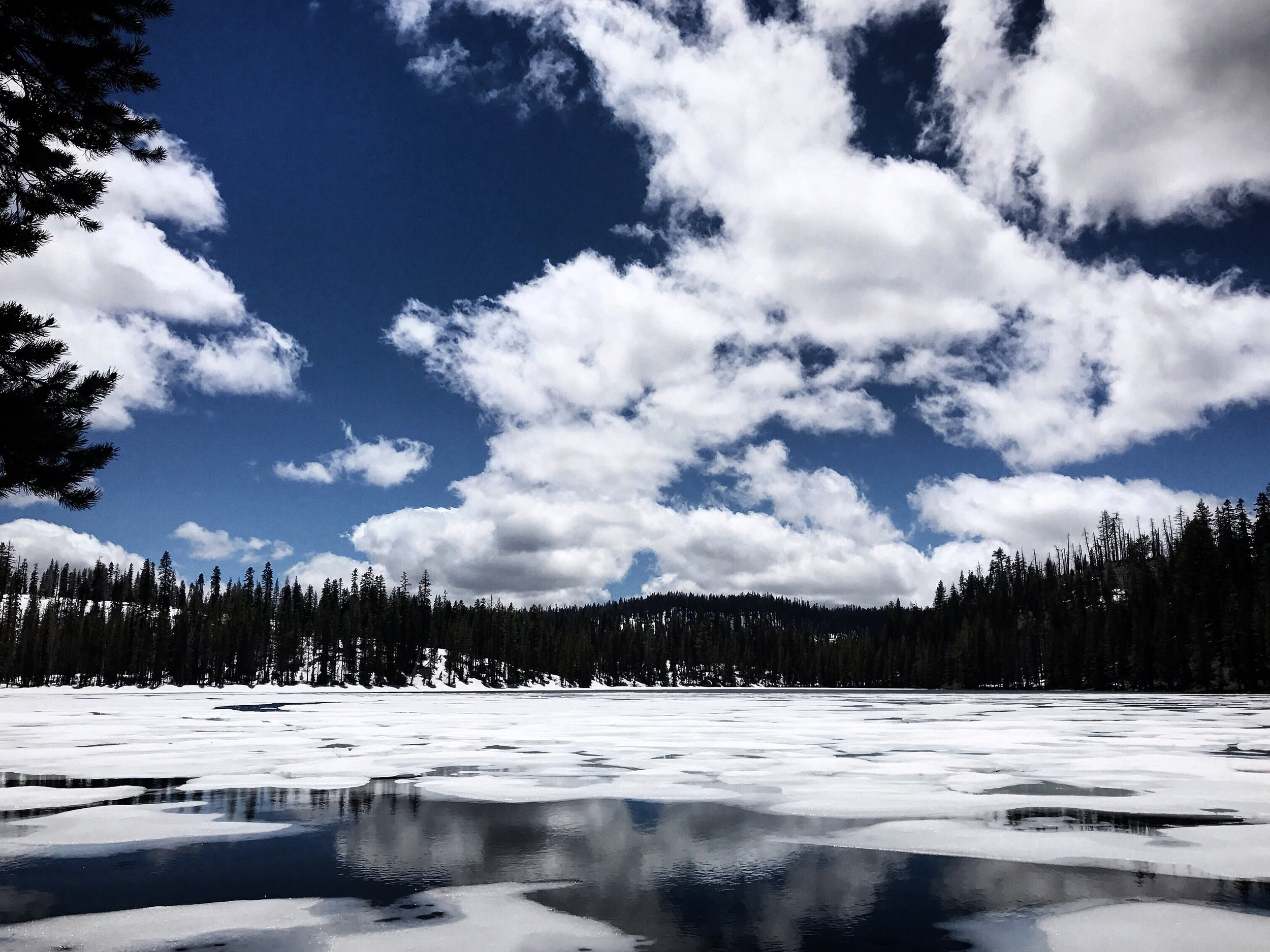 Lassen lakes are still thawing.