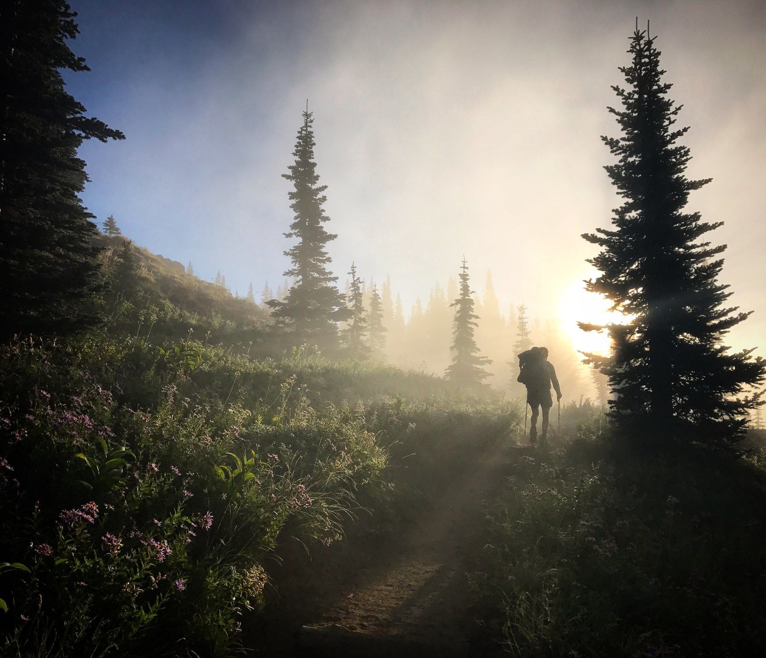 An amazing morning near Mt. Rainier