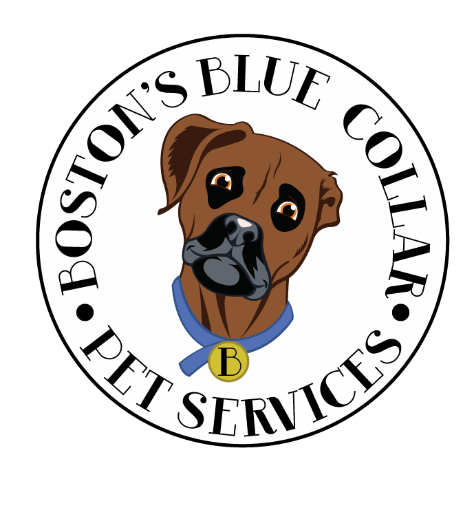 Boston's Blue Collar Pet Services