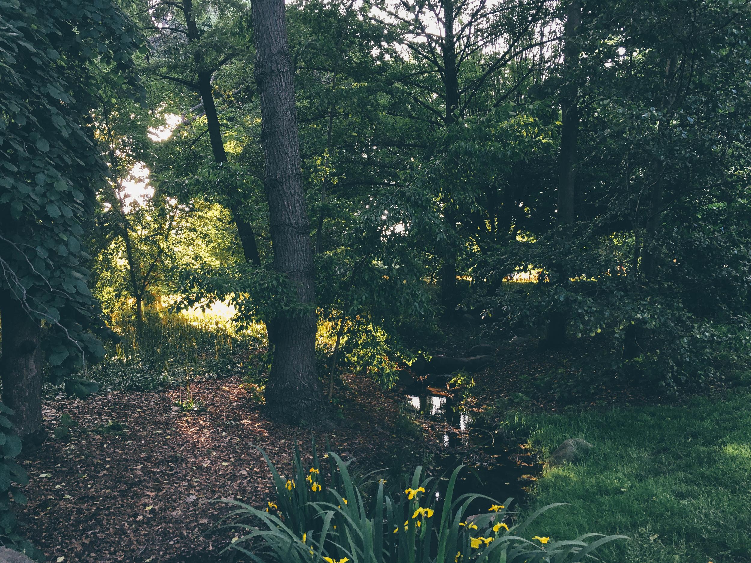 GardenCreek.jpg