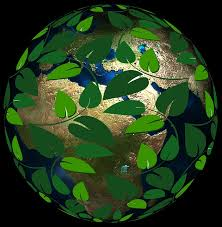 World Covered in Green Leaves photo