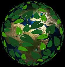 earth responsibility.jpg