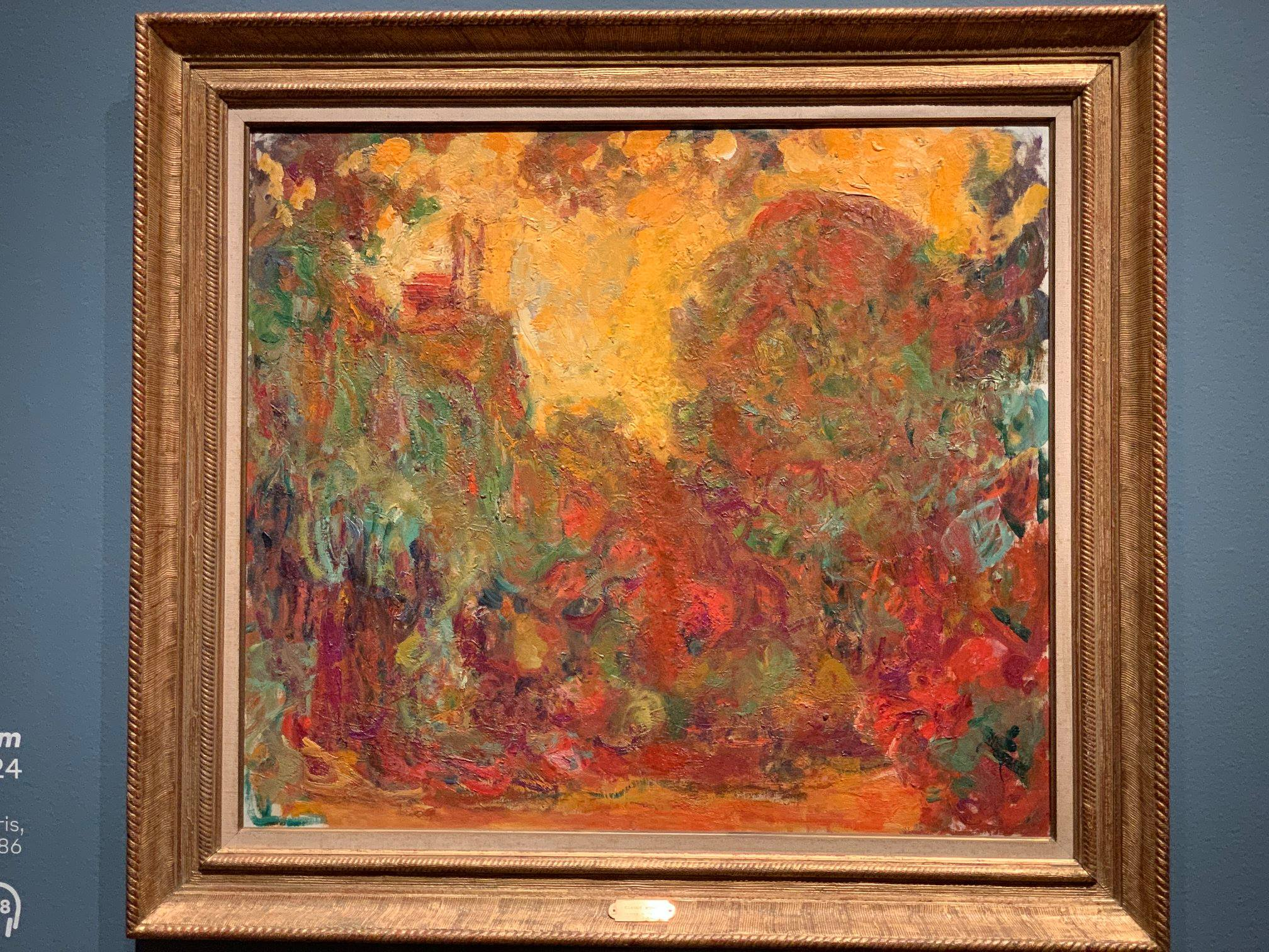 Monet, the old man, mad about painting.